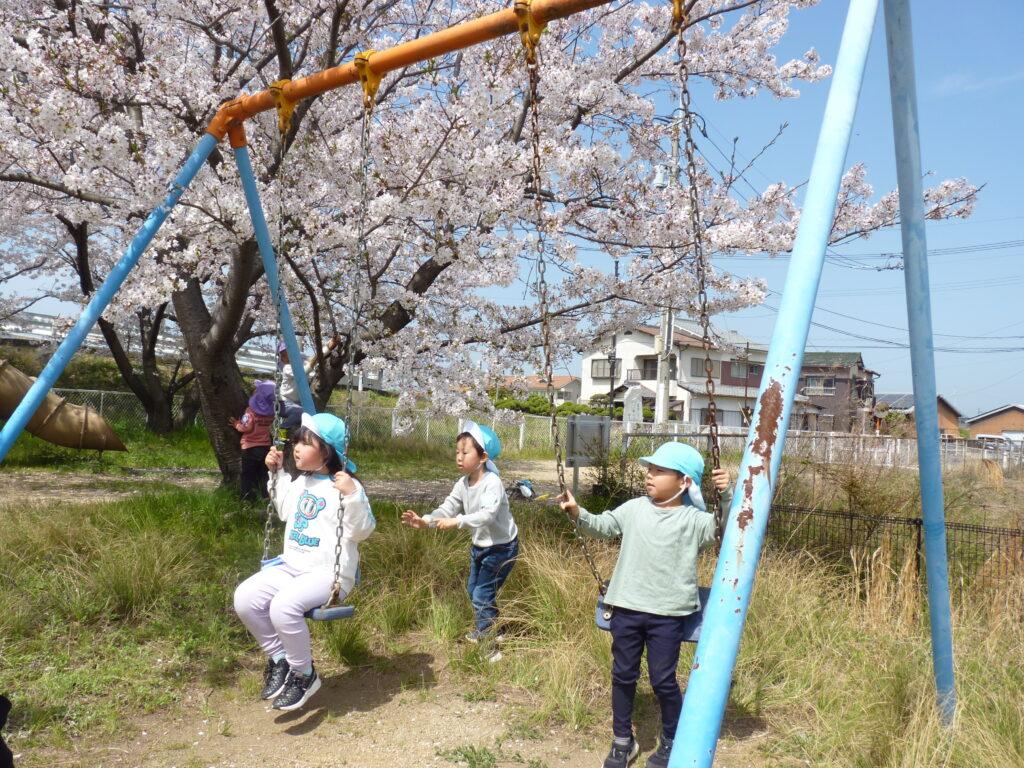 きれいな桜の下で遊んだよ♪